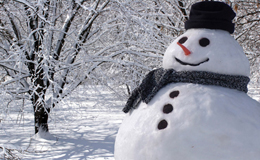 2013\snowman_sm.jpg